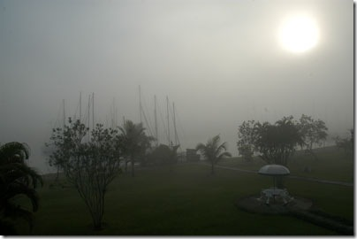 Bracuhy sob fog cerrado - Foto © Hélio Viana