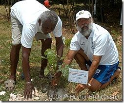 Seu Hélio me ajuda na plantação - Foto © Hector Etchebaster