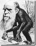 Charge de Charles Darwin
