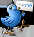 Siga-nos no tuíter